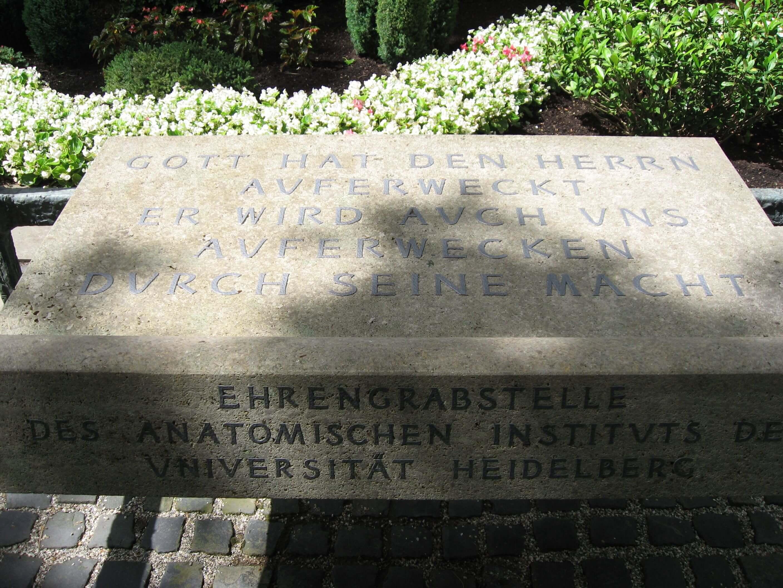 UniversitätsKlinikum Heidelberg: Ein Ort für Trauer und Dank